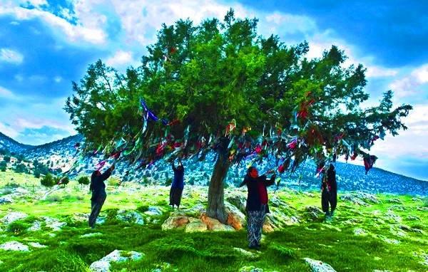 Photo of Türk İnanç Sistemi Üzerine Araştırma ve İncelemeler