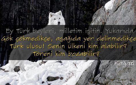 ey türk beyleri