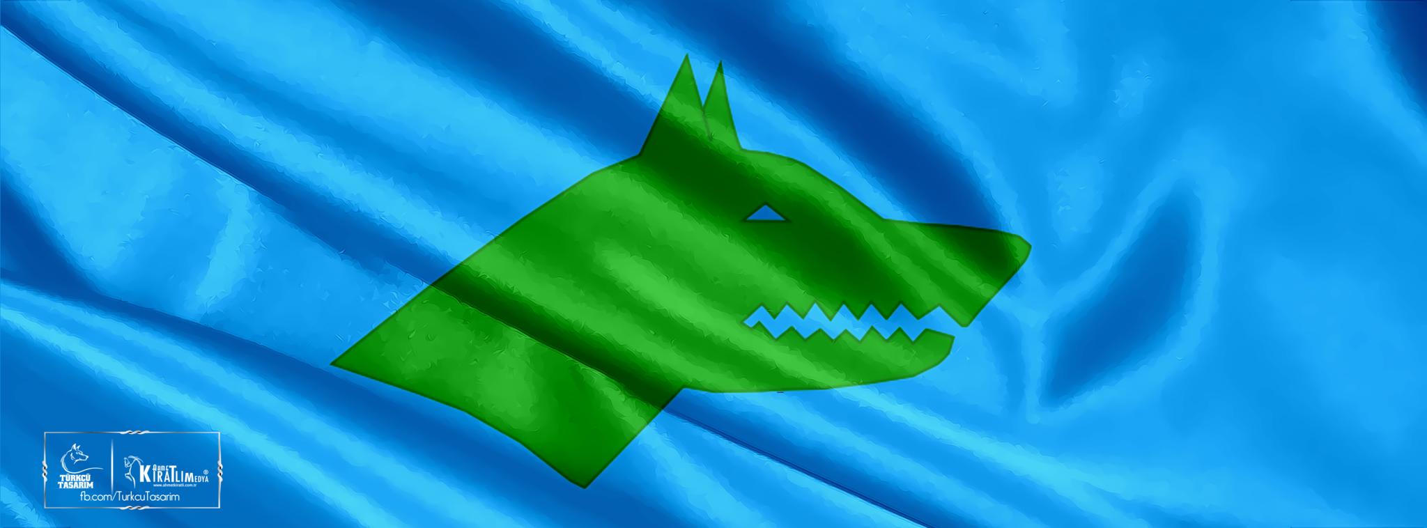 göktürk bayrağı -kapak