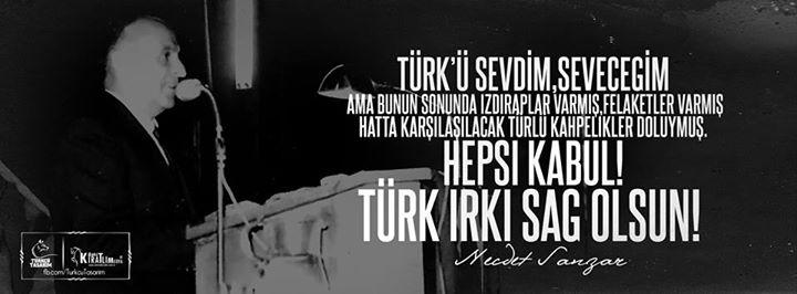 türkü sevdim seveceğim -kapak