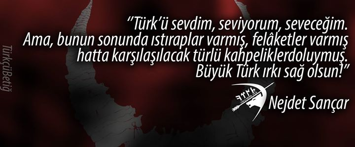 türkü sevdim seveceğim