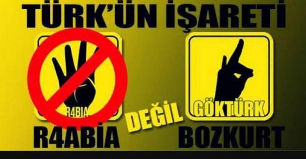 türkün işareti