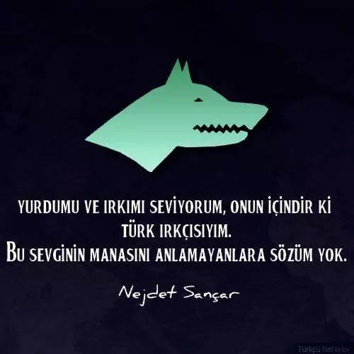 türk ırkçısıyım