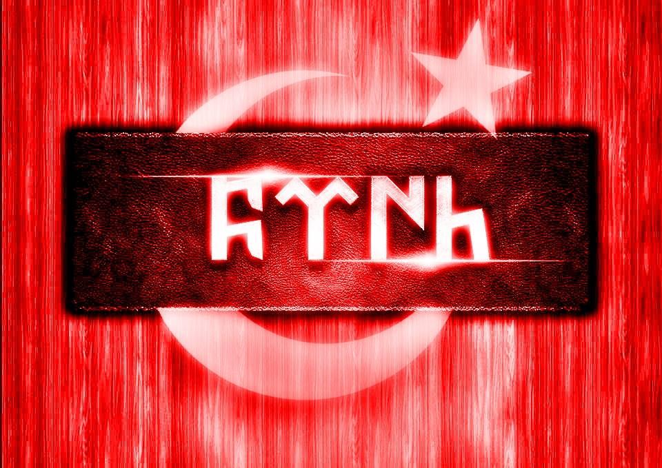 türk bayrağı-göktürkçe 2 -kapak