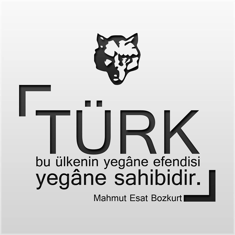 türk bu ülkenin