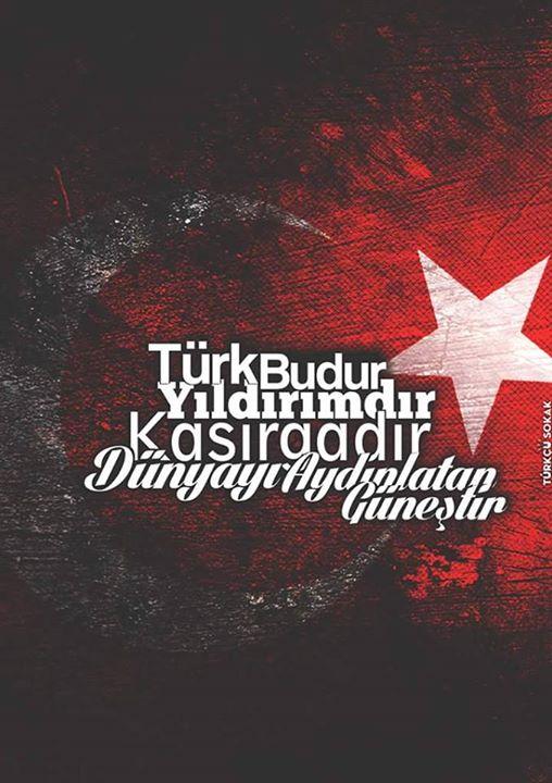 türk budur