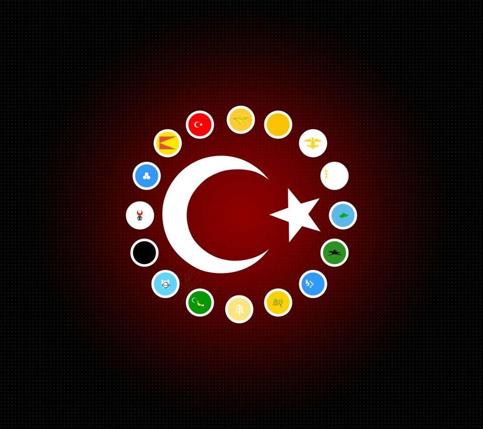 türk devletleri 1