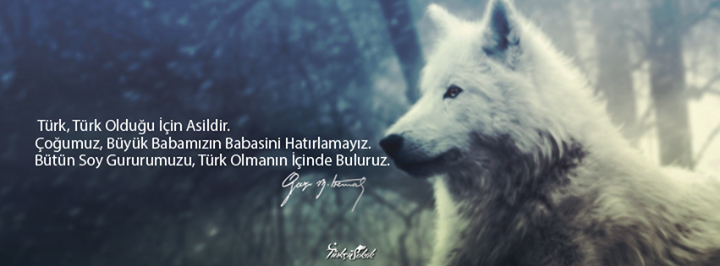 türk türk olduğu için asildir -kapak