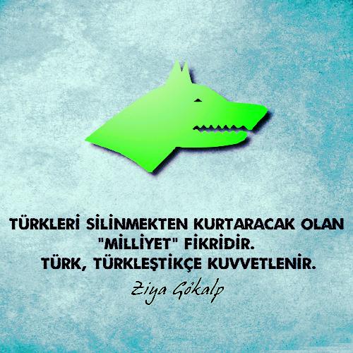 türk türkleştikçe güçlenir