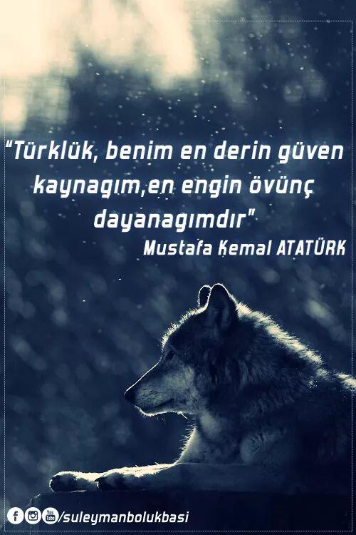 türklük benim